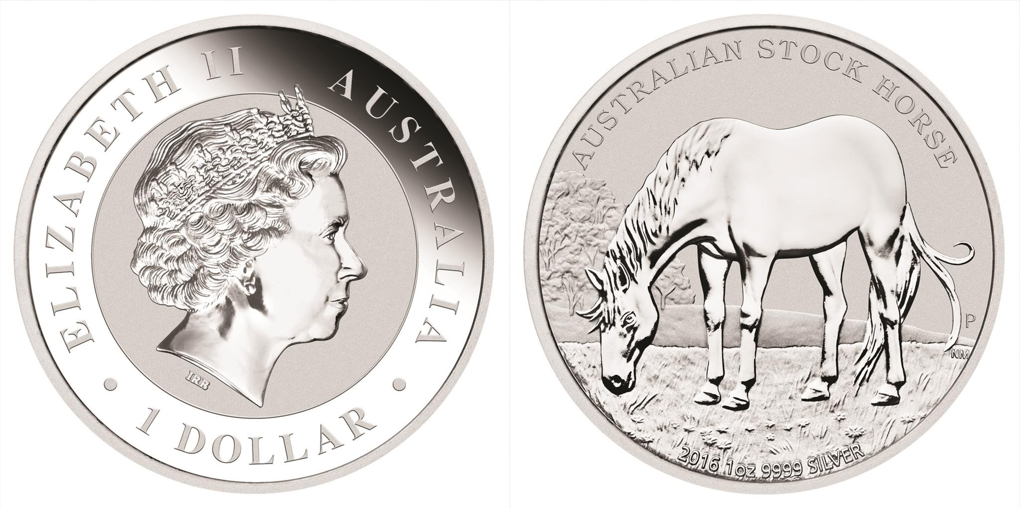 australie 2016 cheval stock