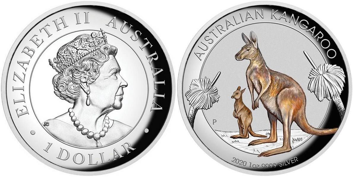 australie-2020-kangourou-hr-couleur