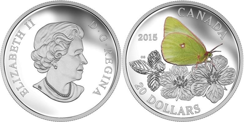 canada 2015 papillon colias gigantea