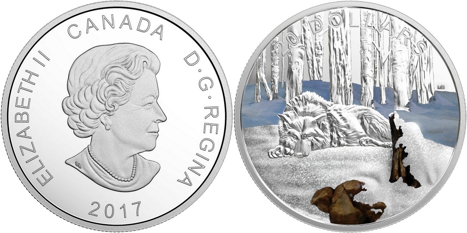canada 2017 nord scintillant loup arctique