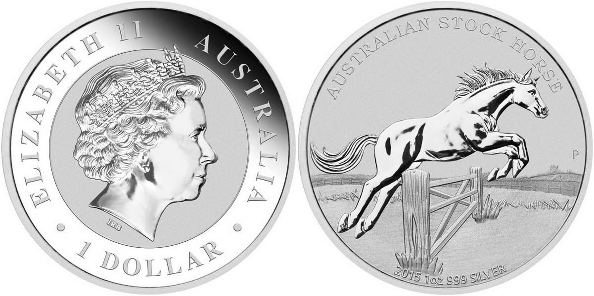 australie 2015 stock horse.jpg