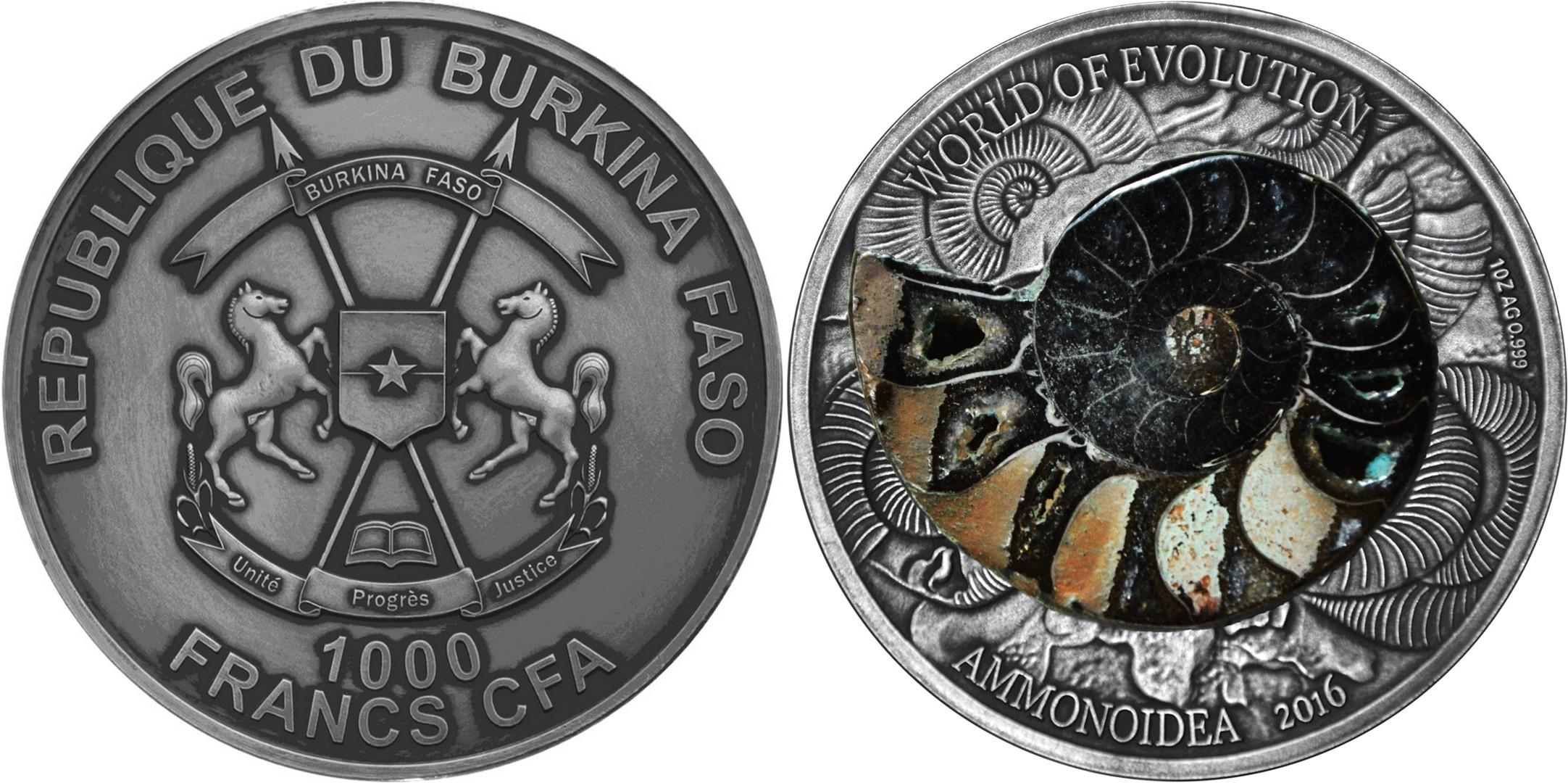 burkina faso 2016 ammonite noire