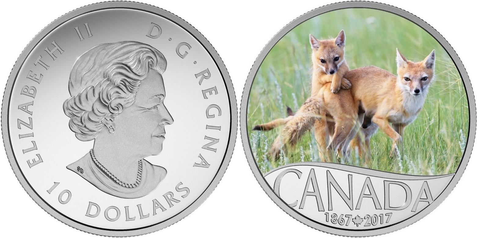 canada 2017 150 ans du canada renard et ses petits