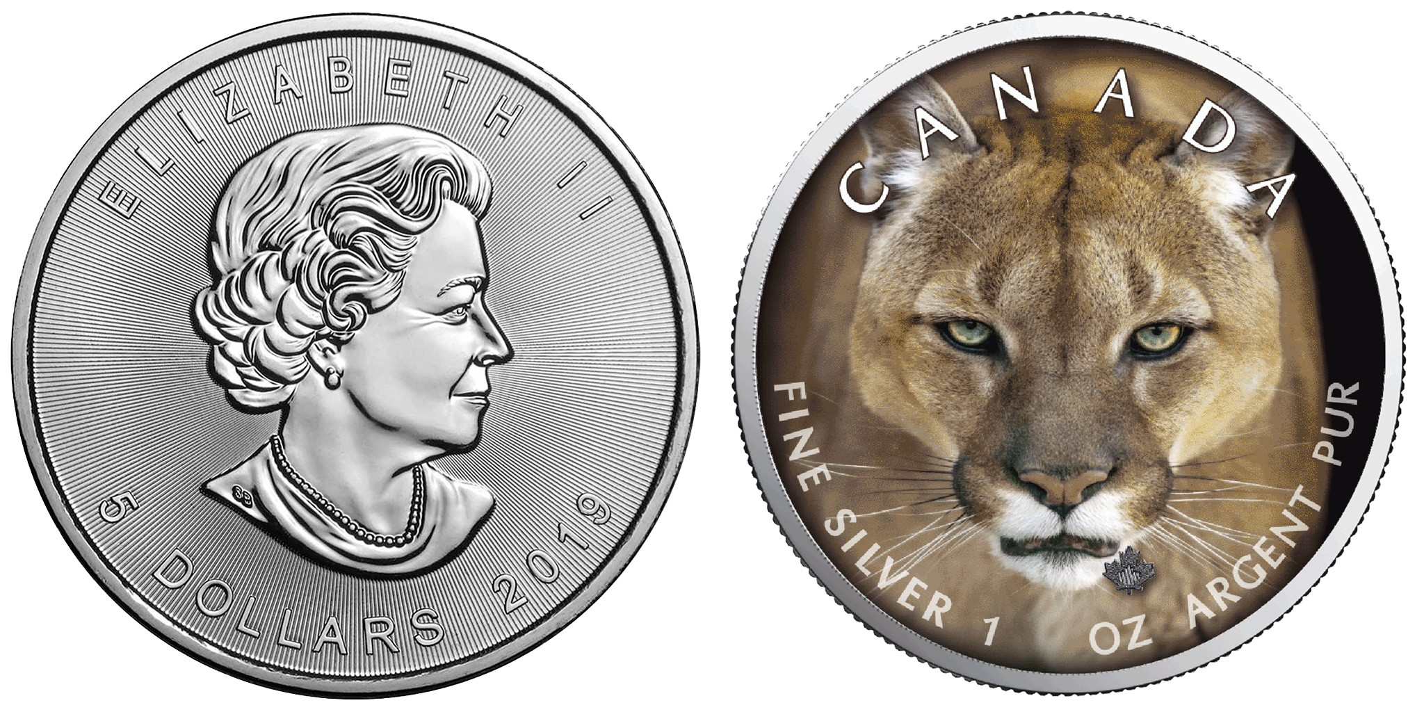 canada-2019-maple-cougar-500-ex