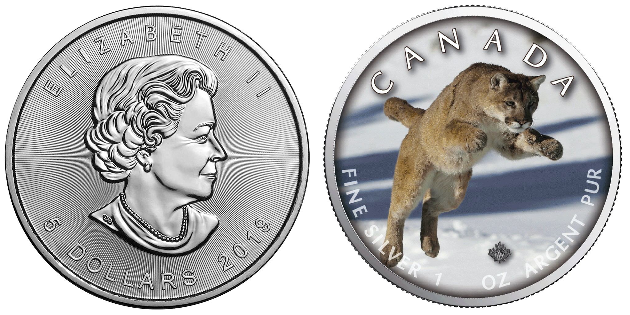 canada-2019-maple-cougar