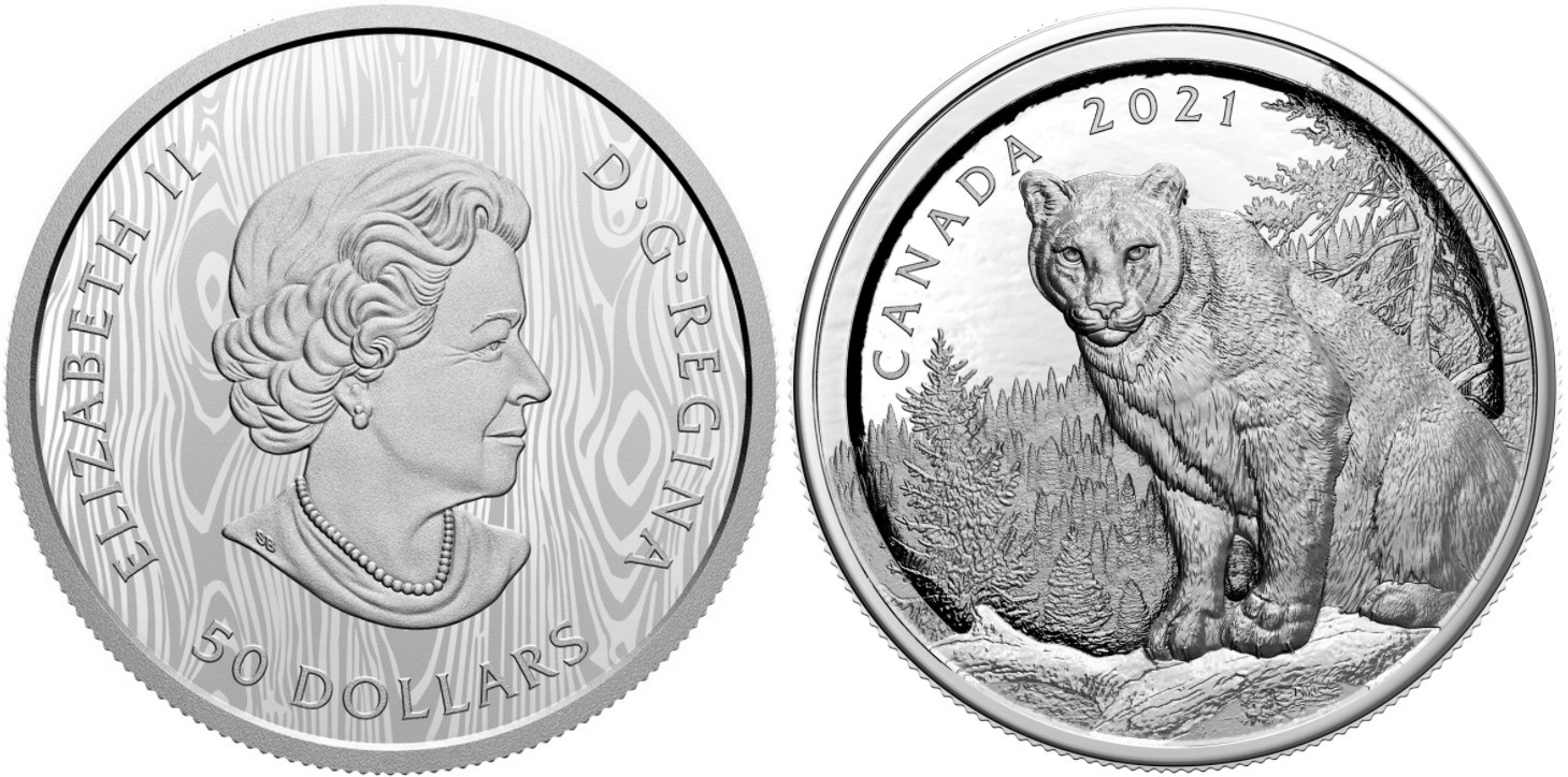 canada-2021-cougar-a-relief-multiple