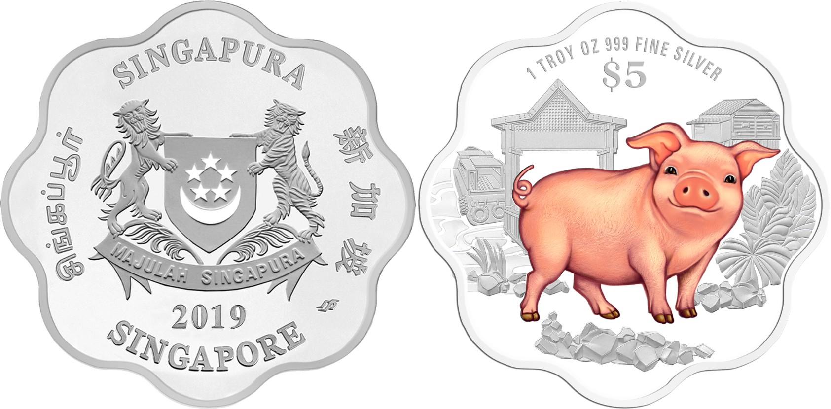 singapour 2019 cochon couleur