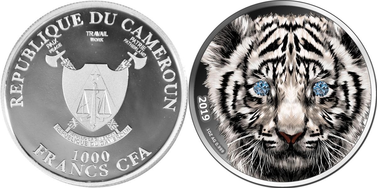 cameroun-2019-tigre-diamant