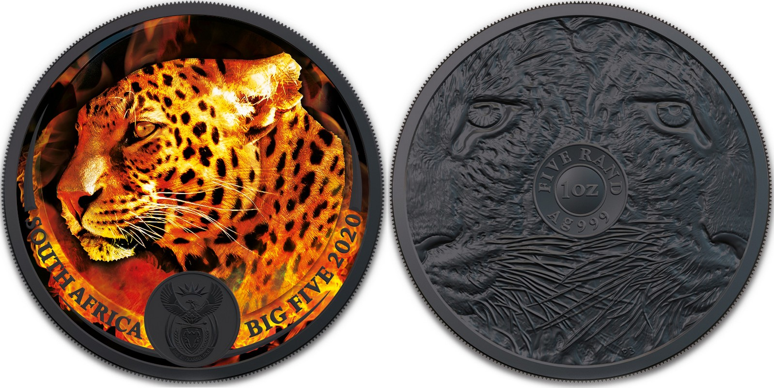 afrique-du-sud-2020-big-five-burning-leopard