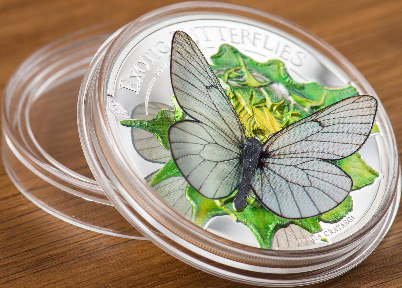 mongolie 2017 papillons exotiques relief