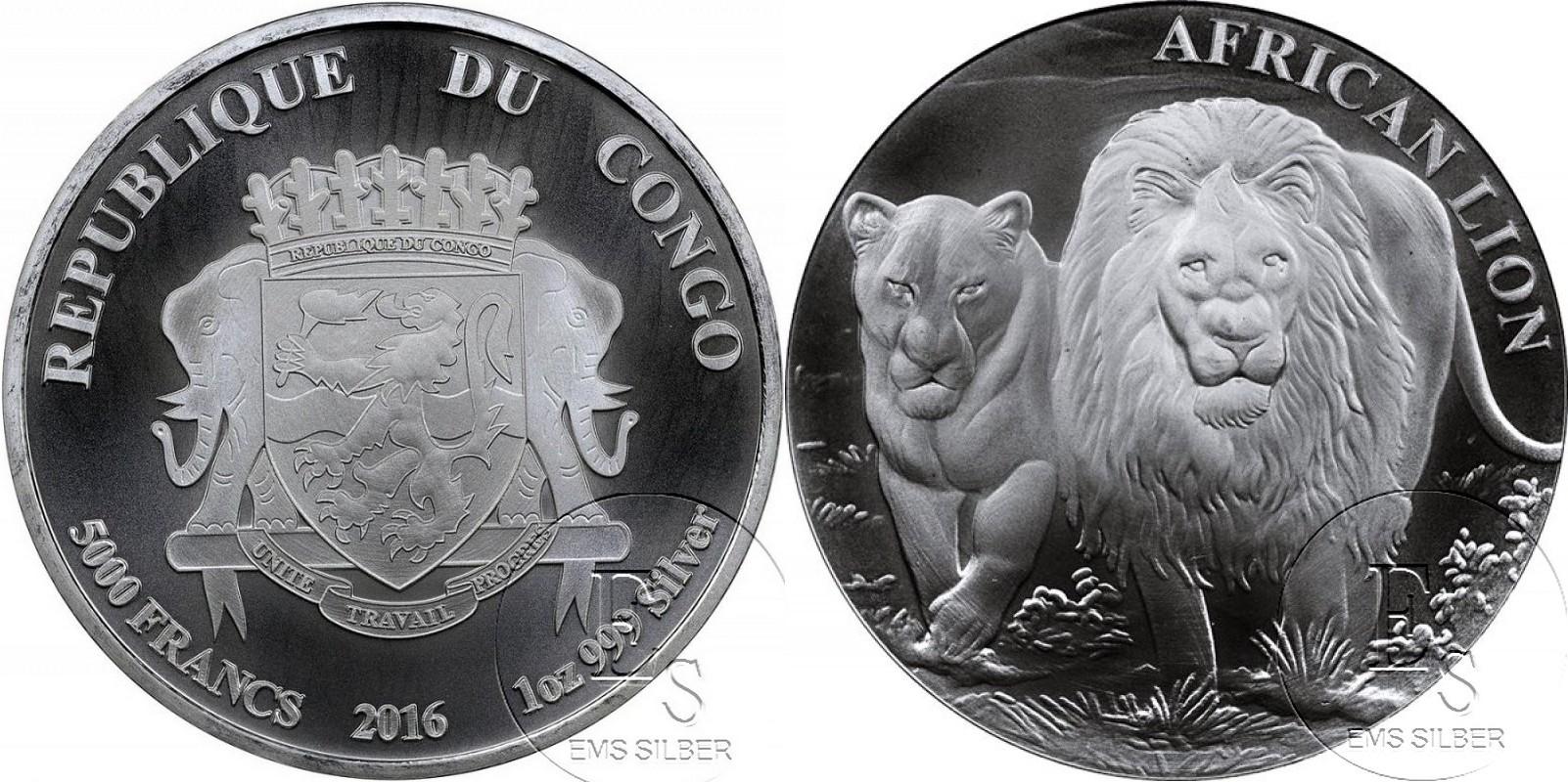 congo 2016 lion