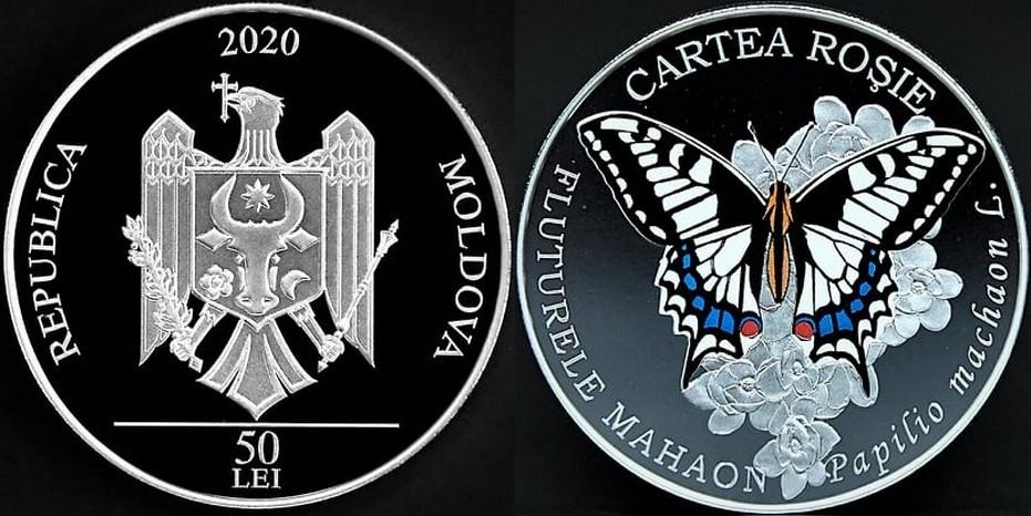moldavie-2020-papillon-machaon