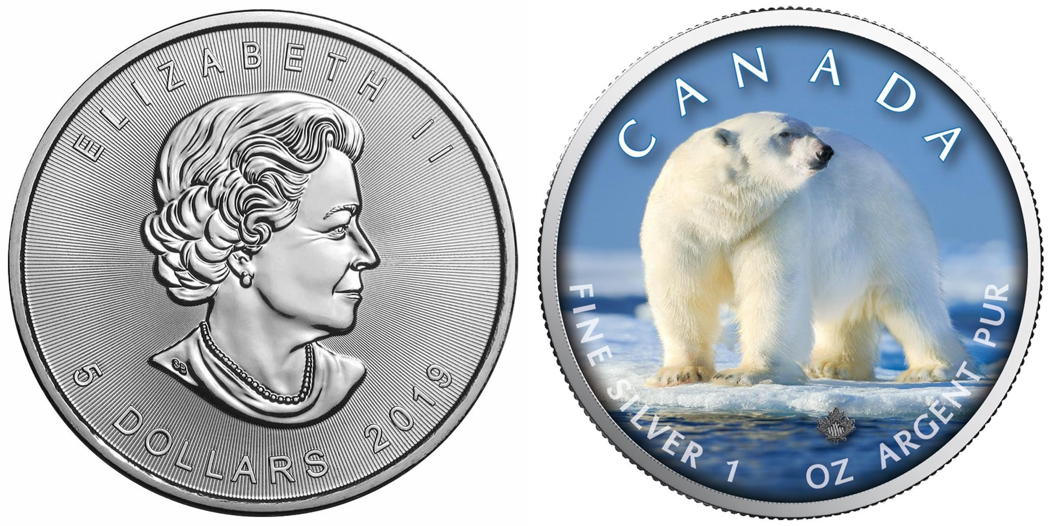 canada 2019 maple leaf ours polaire