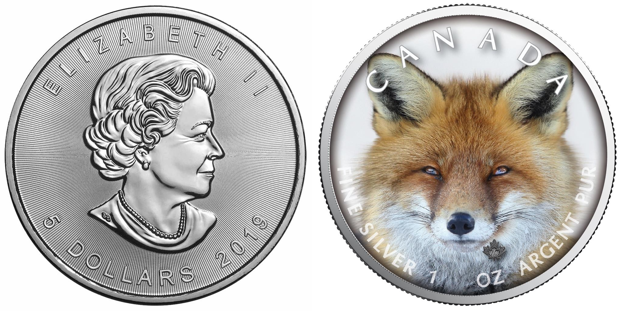 canada 2019 maple leaf renard 500 ex