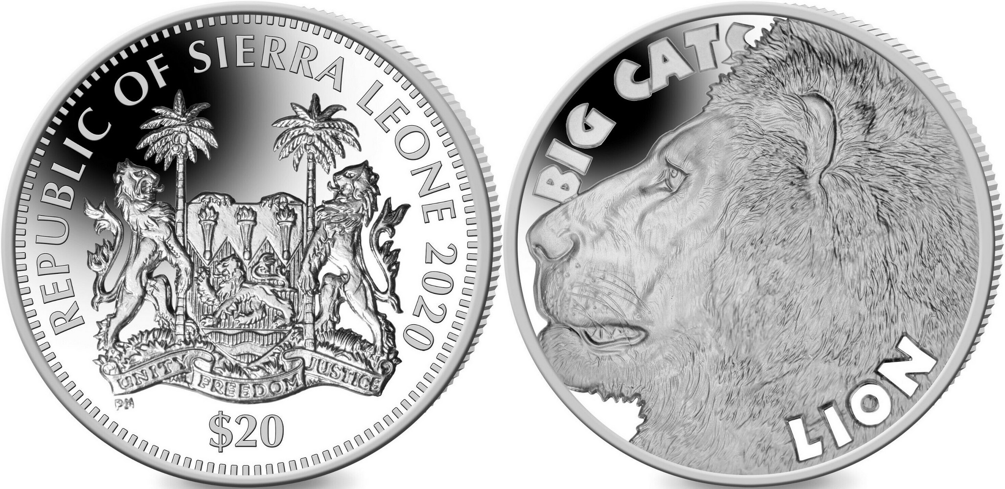 sierra-leone-gros-chats-lion