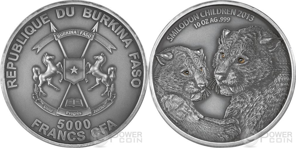 burkina faso 2013 enfant smilodon 10 oz