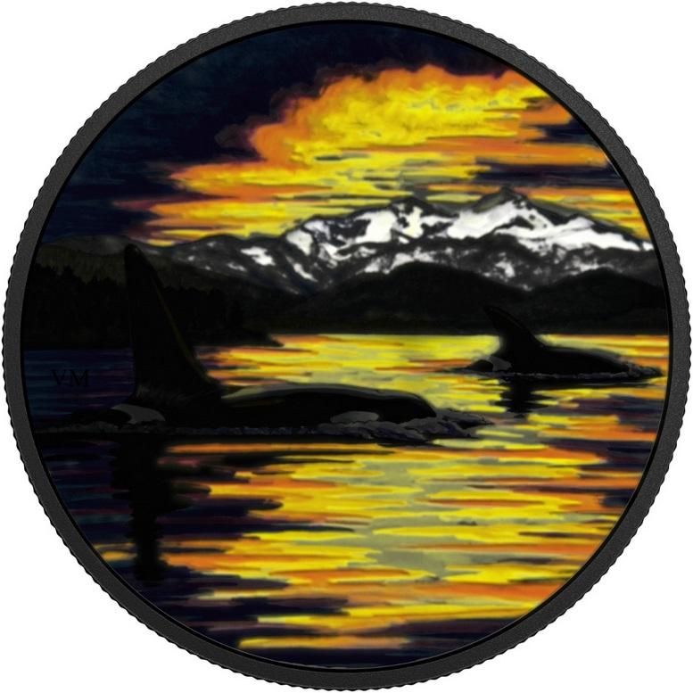 canada 2017 animaux au clair de lune orque 1