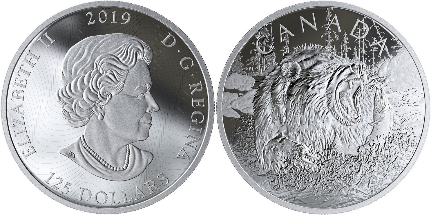 canada-2019-prédateurs-féroces-grizzly