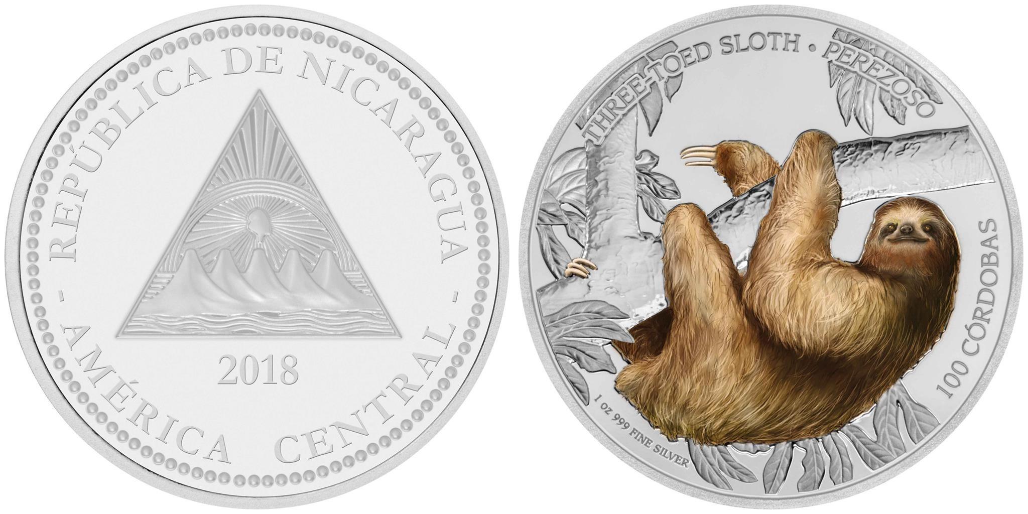 nicaragua 2018 vie sauvage paresseux