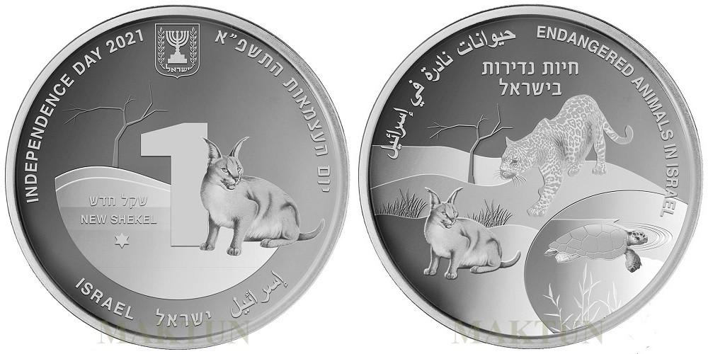 israel-2021-animaix-en-danger-caracal