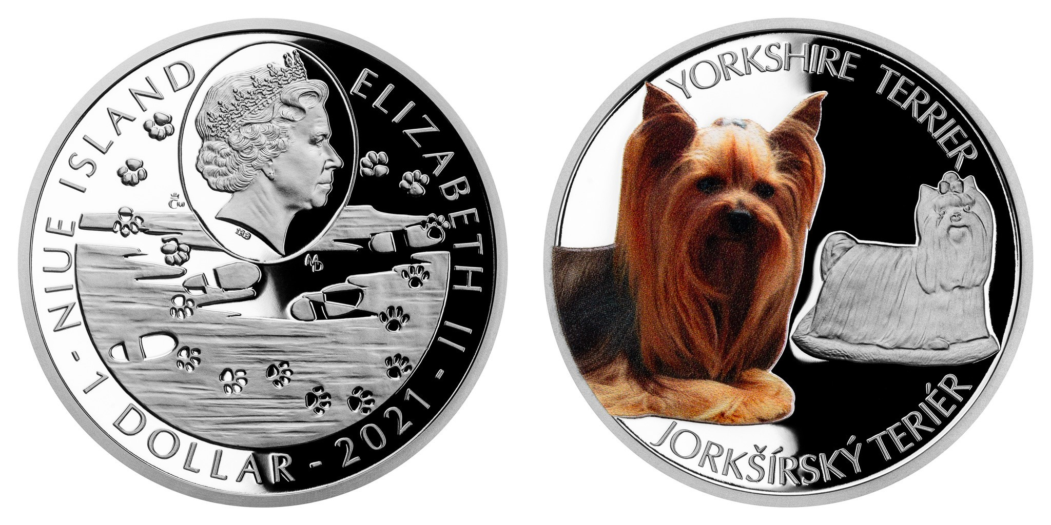 niue-2021-yorkshire-terrier