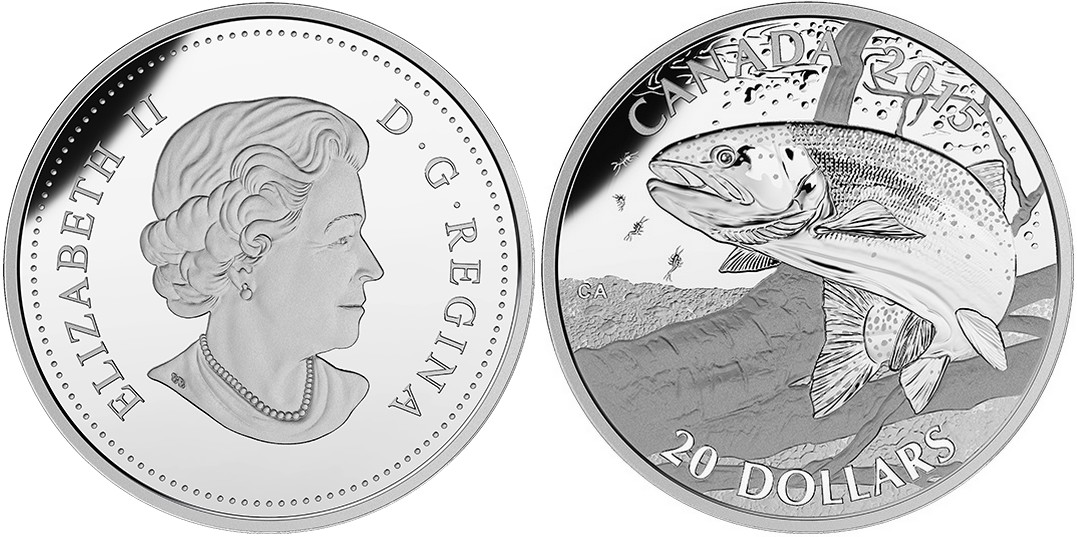 canada 2015 poisson-gibier truite arc-en-ciel.jpg