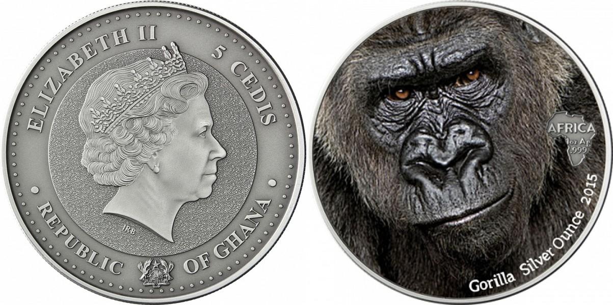 ghana 2015 gorille couleur.jpg