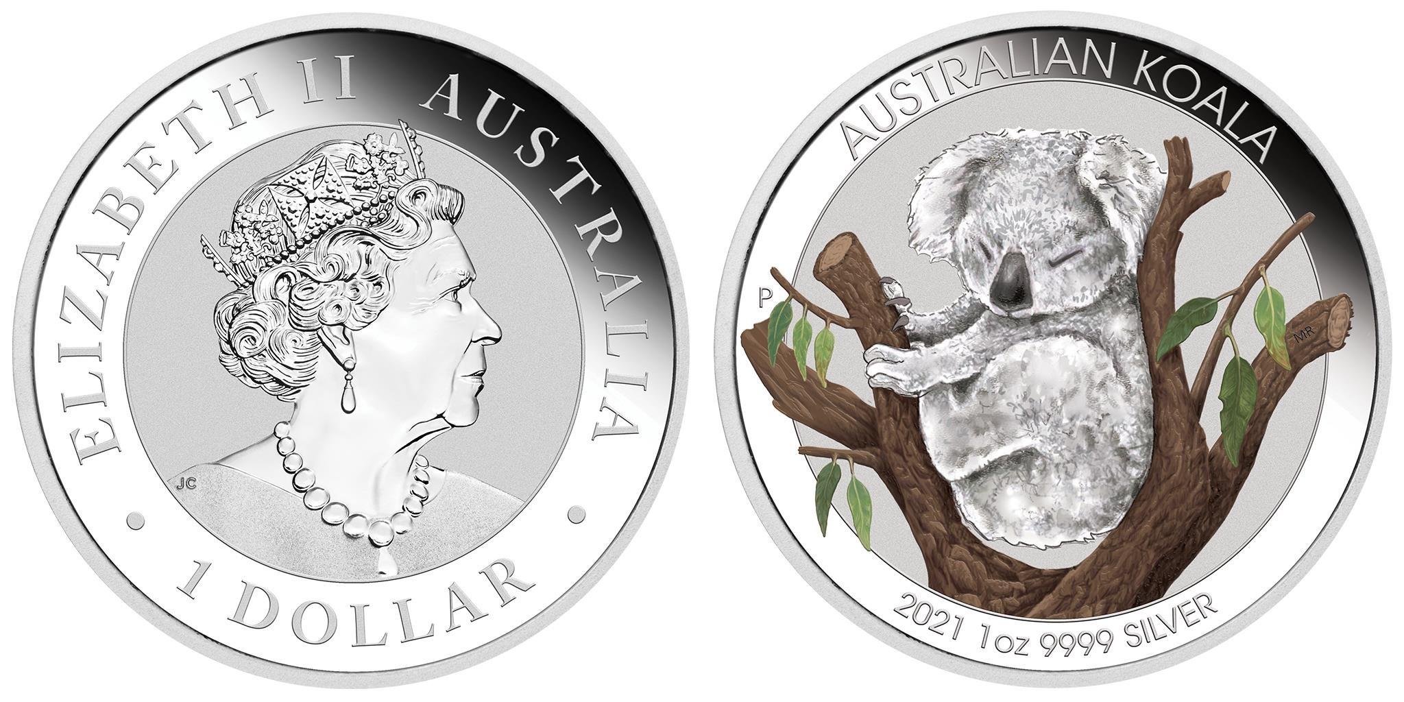 australie-2021-koala-couleur