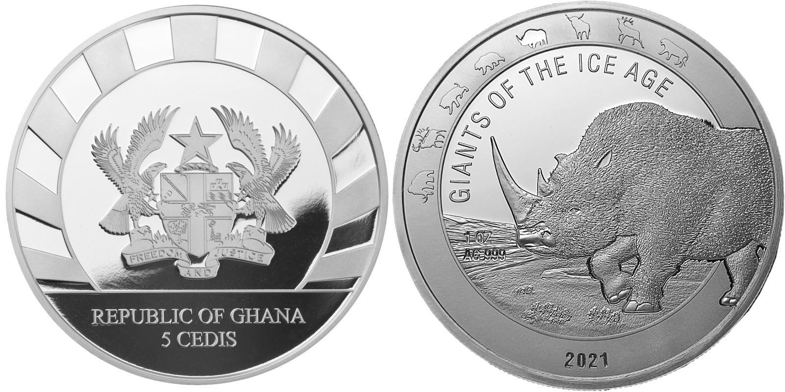 ghana-2021-rhinoceros-laineux