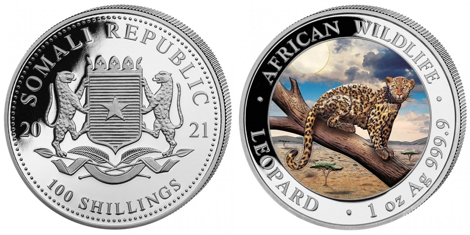 somalie-2021-leopard-couleur