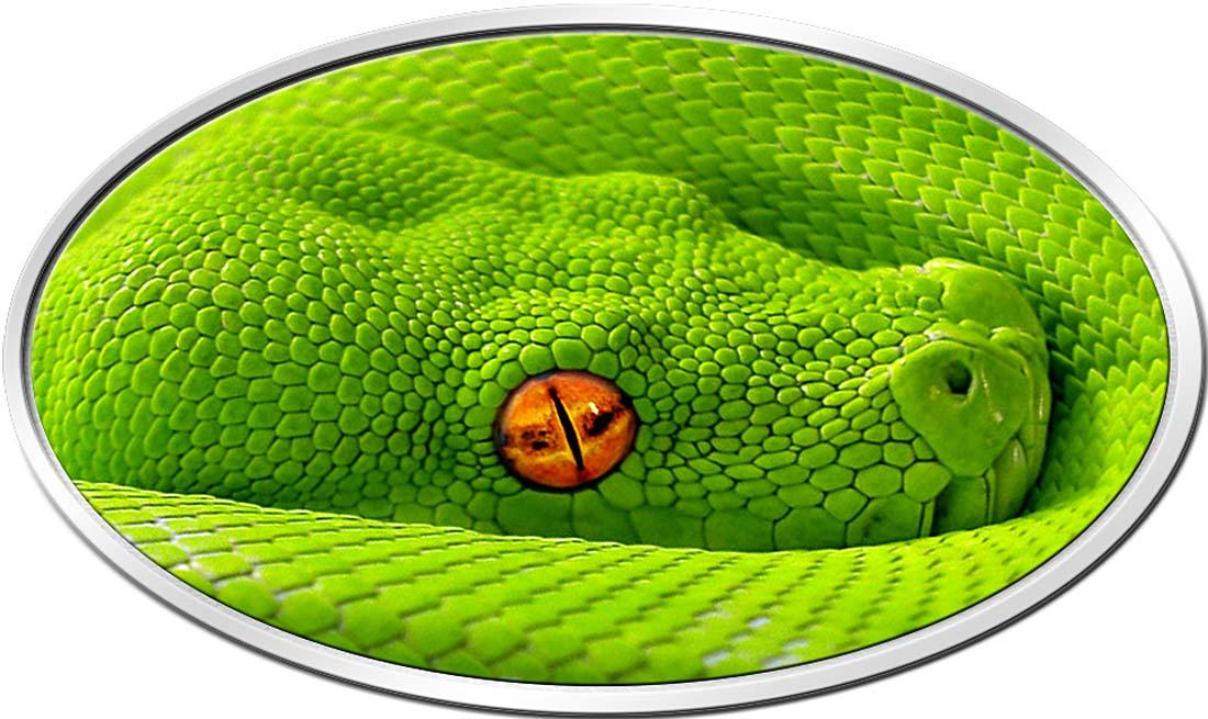fidji 2016 python
