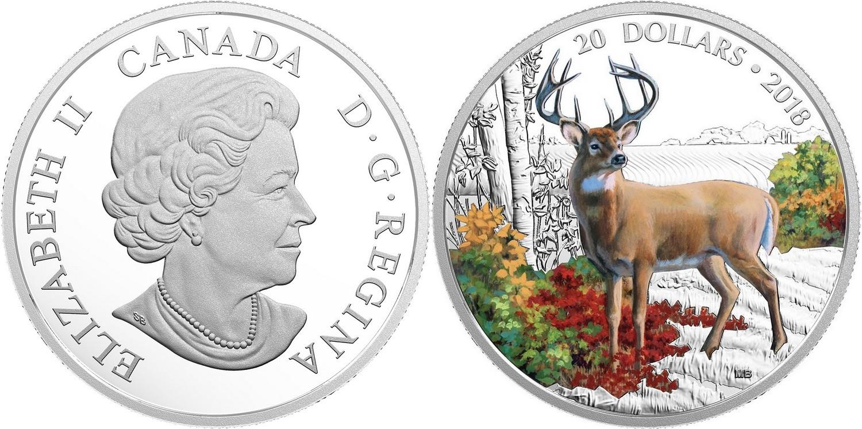 canada 2018 nature majestueuse cerf de virginie
