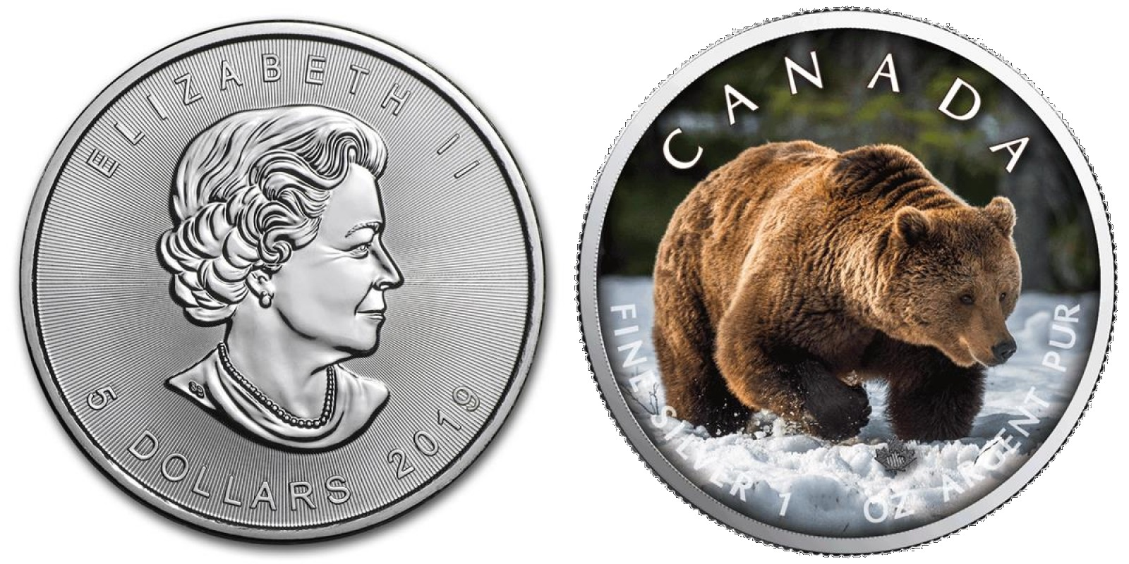 canada 2019 maple grizzly