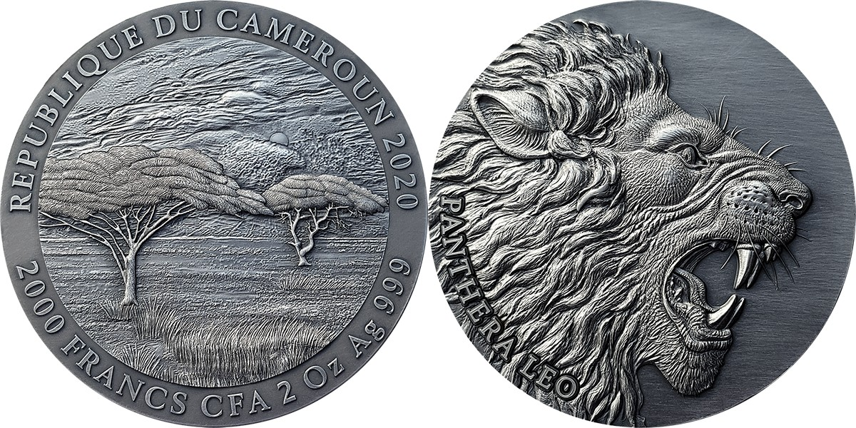 cameroun-2020-lion
