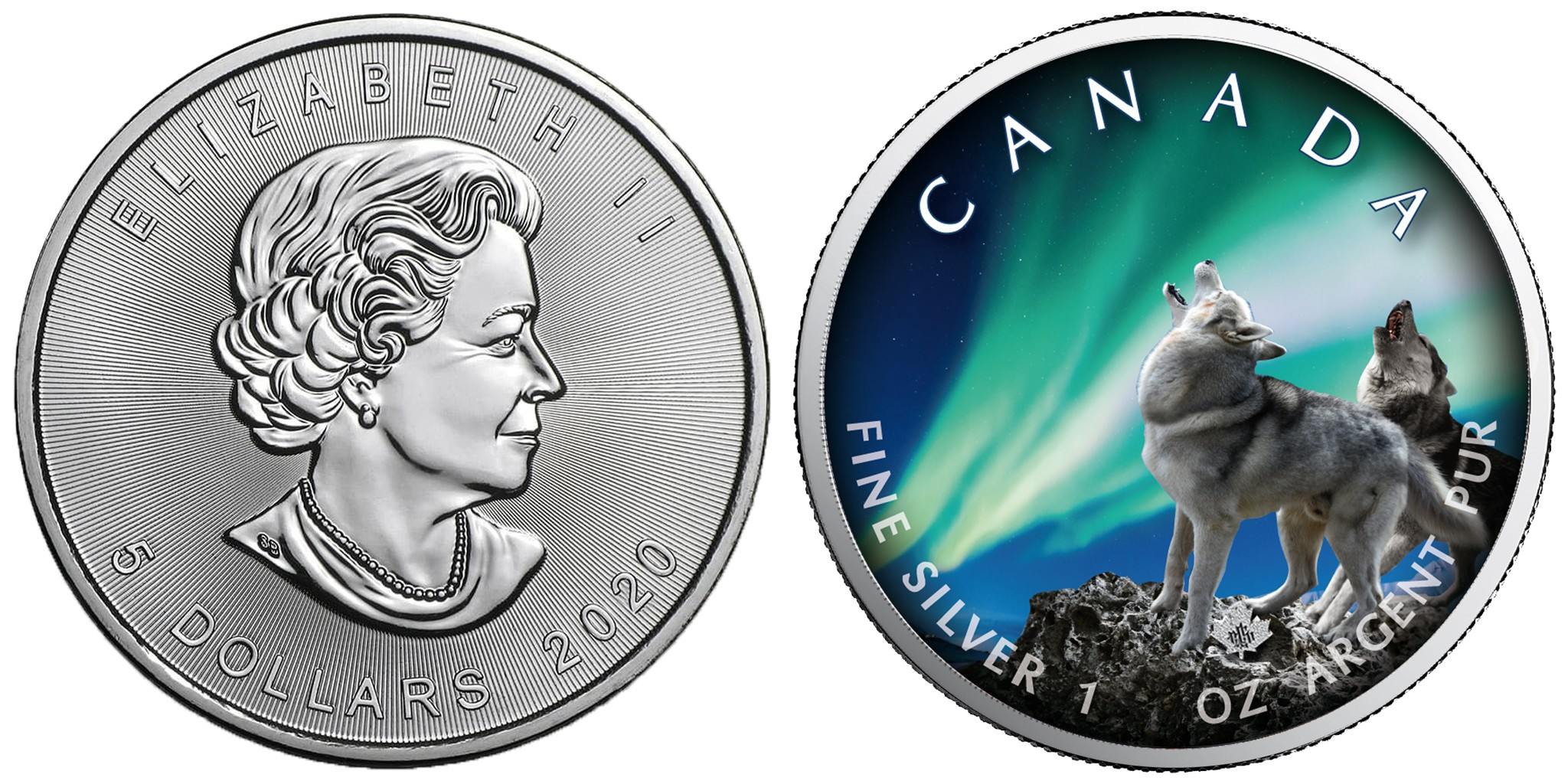 canada-2020-nuits-polaires-loups