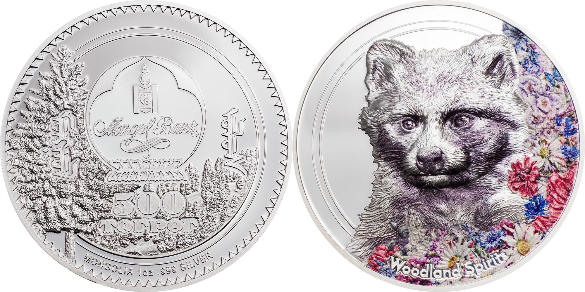 mongolie-2020-esprit-des-bois-chien-raton-laveur