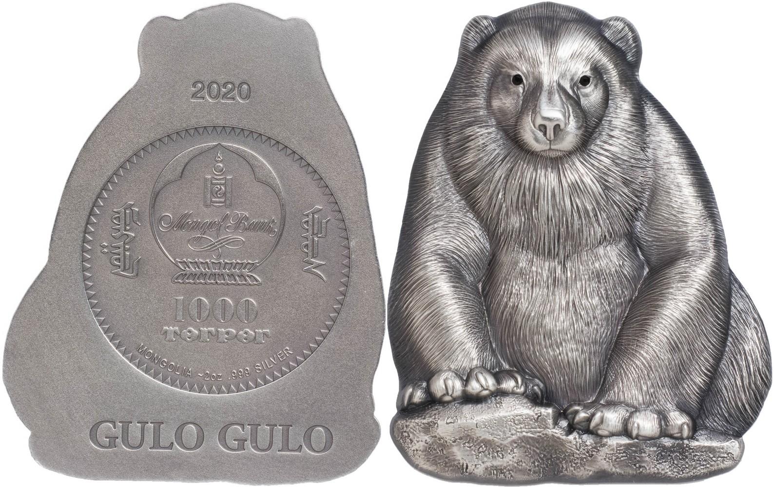 mongolie-2020-gulo-gulo-carcajou