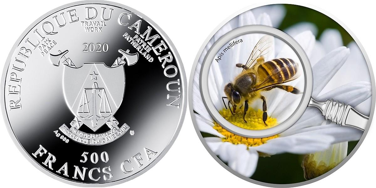cameroun-2020-abeille