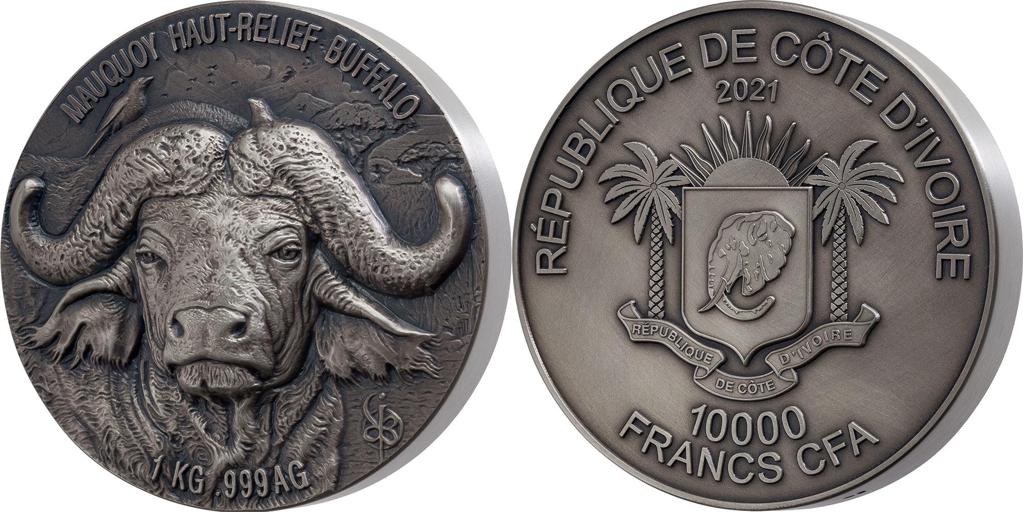 cote-divoire-2021-buffle-mauquoy-kg