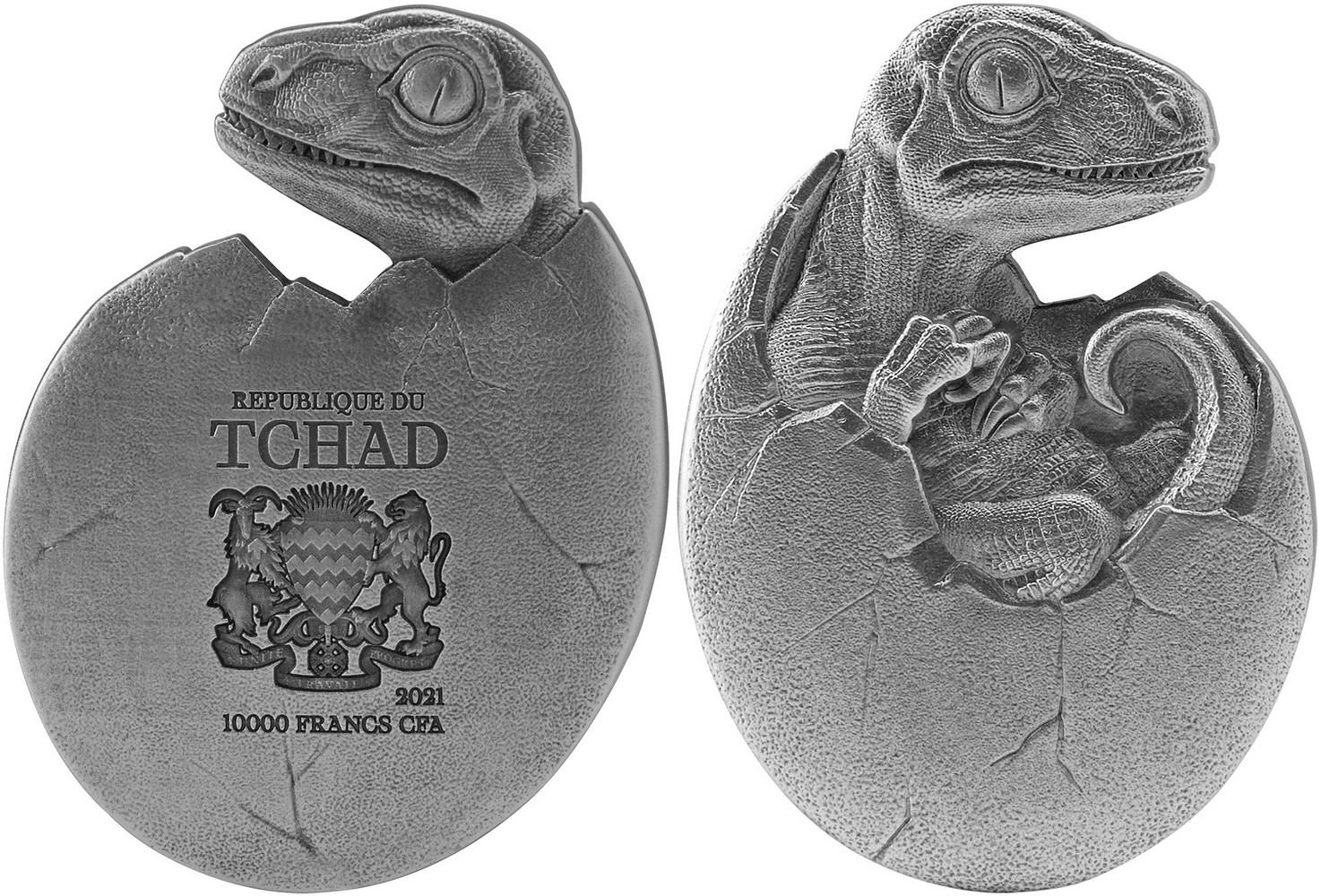 tchad-2021-velociraptor