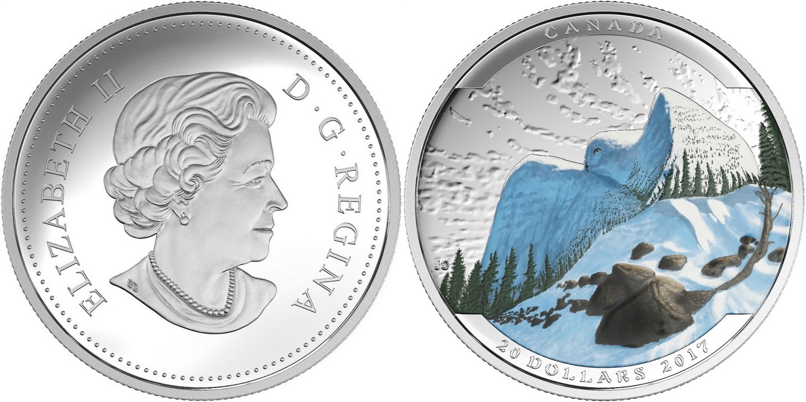 canada 2017 paysages et illusions harfang des neiges