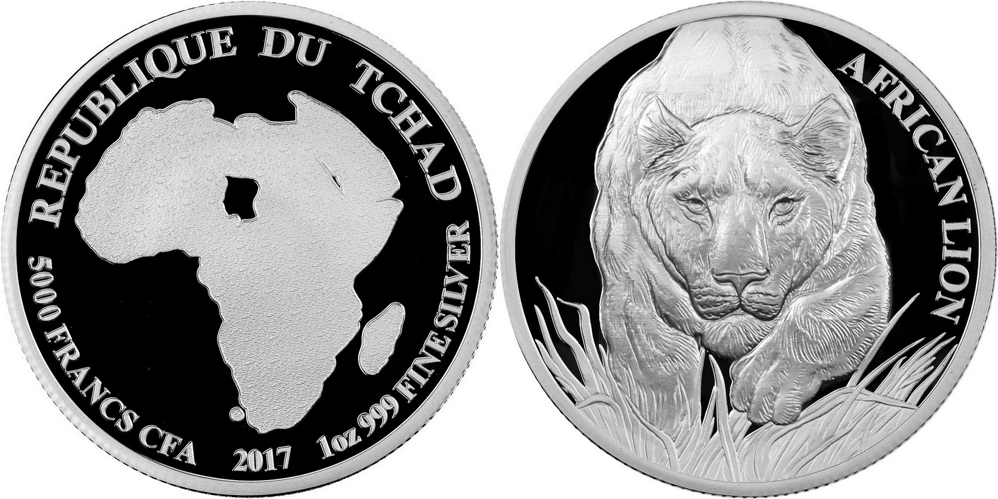 thad 2017 lion africain proof