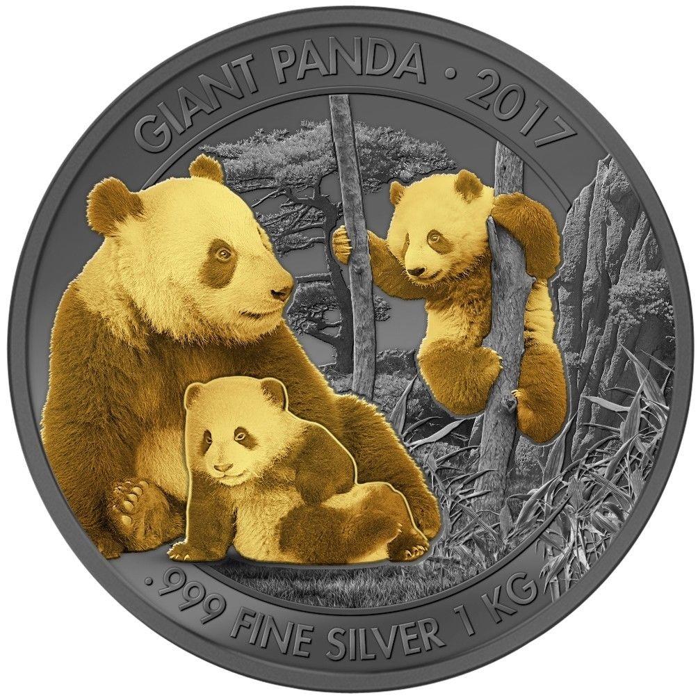 cameroun 2017 panda enigma kg