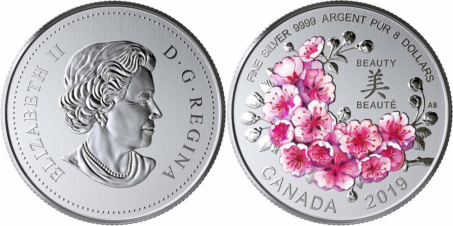 canada 2019 cerisiers en fleurs