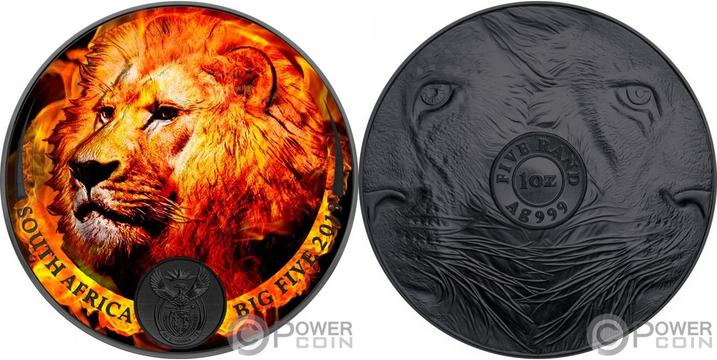 afsud-2019-big-five-lion-burning-ruthenium