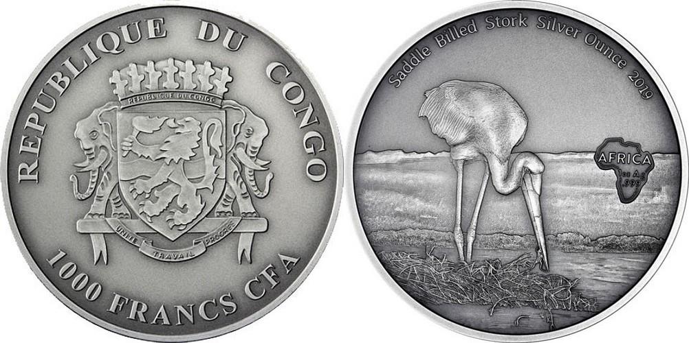 congo-2019-cigogne