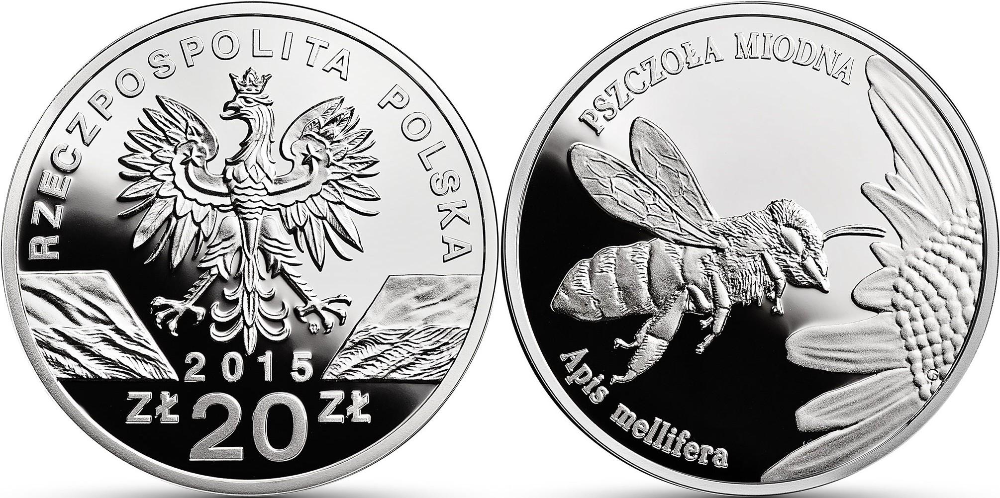 pologne 2015 abeille
