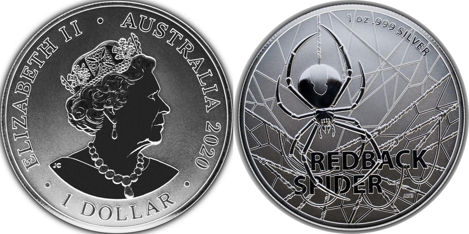 australie-2020-red-back-spider-bu
