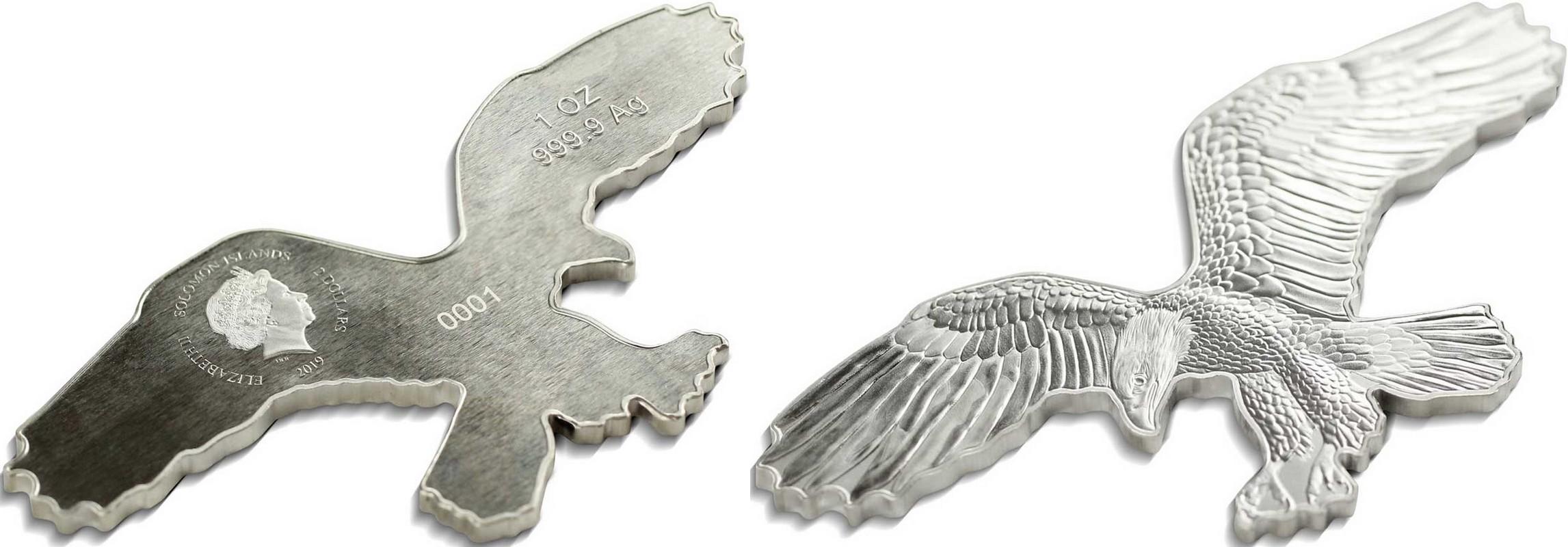 salomon-2019-aigle-chauve