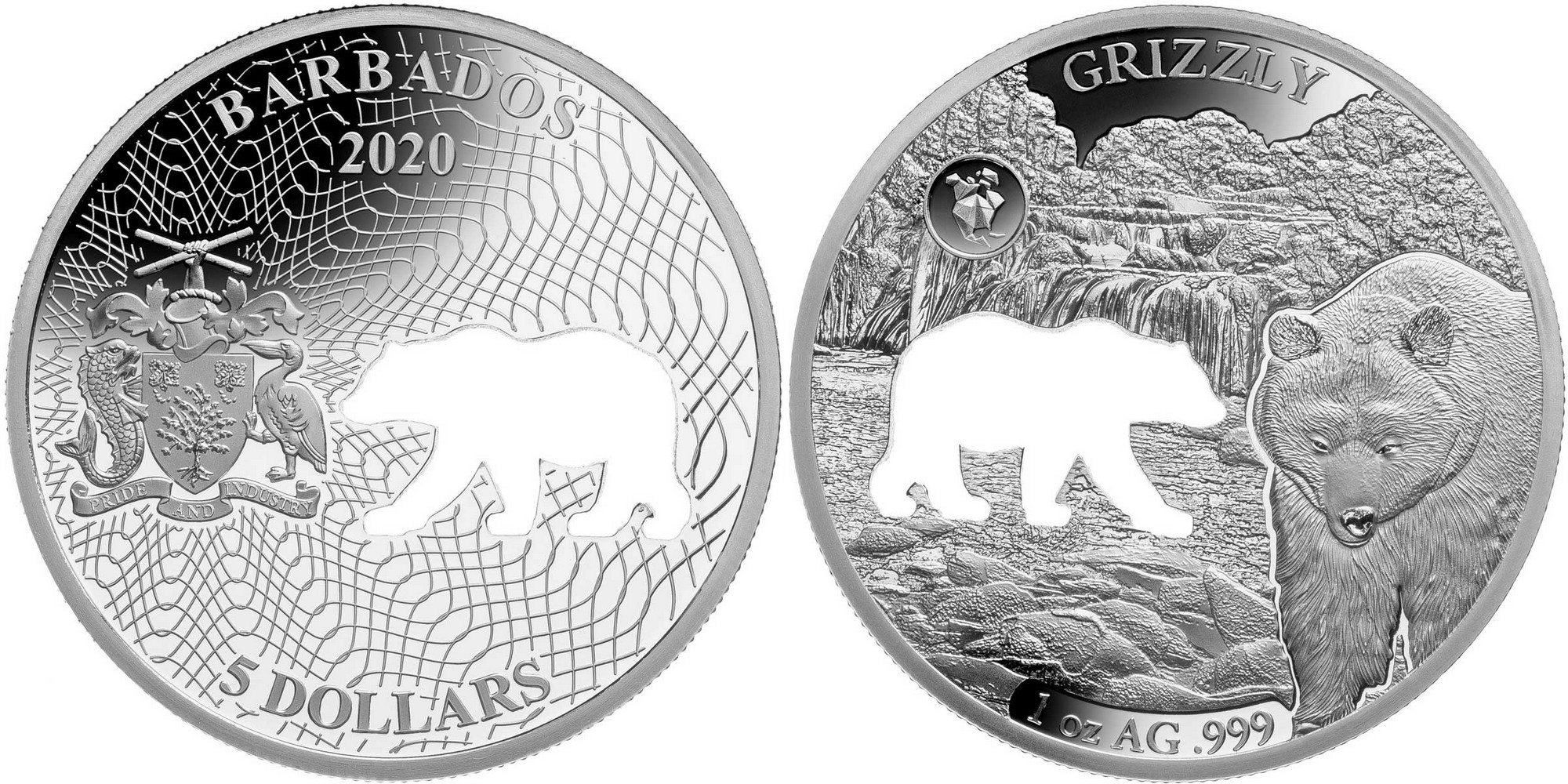 barbade-2020-formes-damérique-grizzly